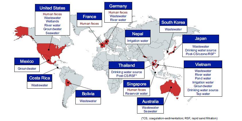 Paesi e tipi di campione segnalati nel rilevamento di PMMoV nelle feci umane e negli ambienti acquatici.