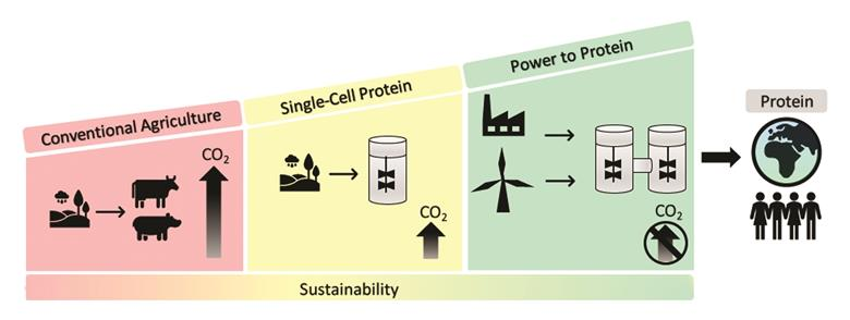 Bio-processo a due stadi per la produzione di proteine alimentari