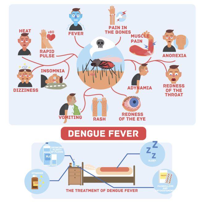 sintomi della Dengue