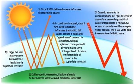meccanismo di azione dei gas serra nell'ambiente prodotti anche dagli animali da allevamento