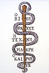 Raffigurazione di un serpente, simbolo della medicina nell'antica Grecia