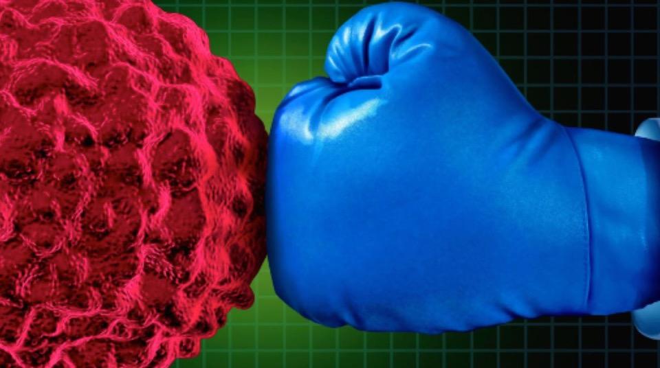 Medicina di precisione: come un pugile si bersaglieranno i tumori