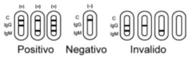 Interpretazione dei risultati del test rapido COVID-19.