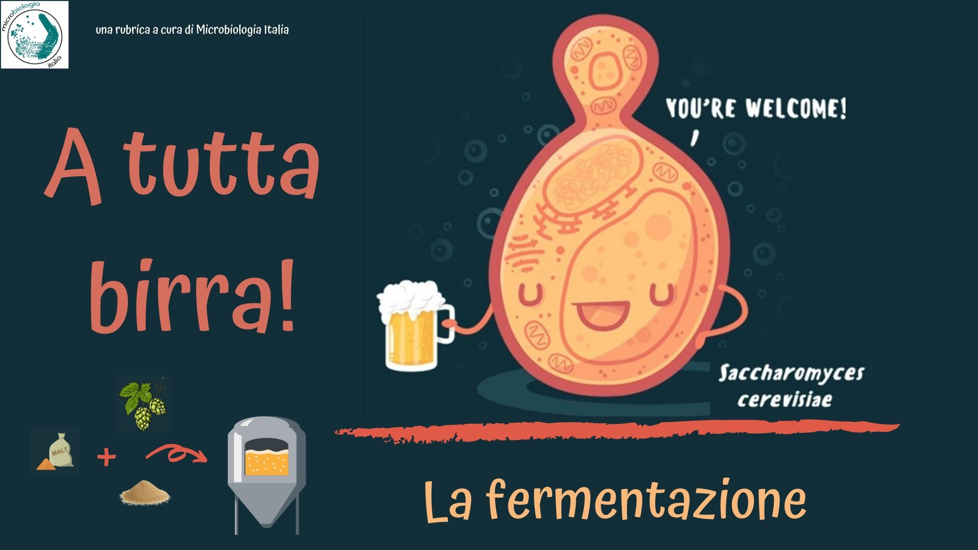 a tutta birra! - la fermentazione a cura di microbiologia italia