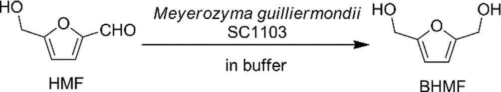 Rappresentazione schematica della reazione di riduzione della 5-HMF a 2,5-BHMF catalizzata dal lieviti Meyerozyma guilliermondii SC1103.