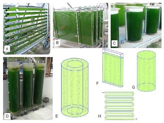Differenti configurazioni di fotobioreattori per la coltivazione di microlaghe