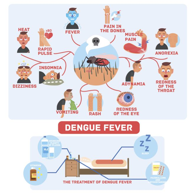 Sintomatologia Dengue