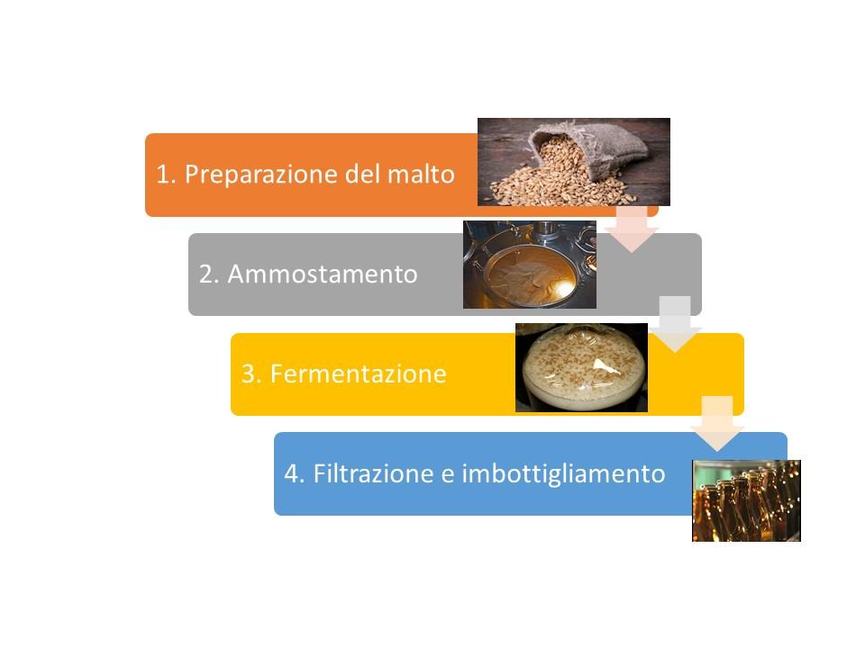 fasi del processo di produzione della birra
