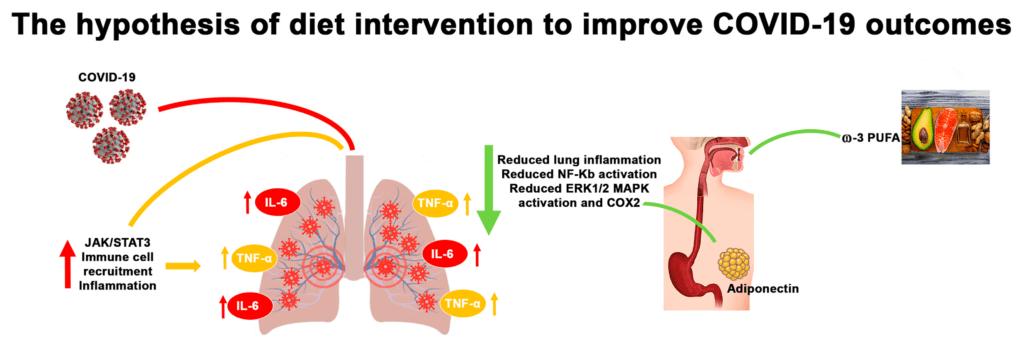 acidi grassipolinsaturi omega 3 e omega 6 modulano la risposta risposta immunitaria e infiammatoria.