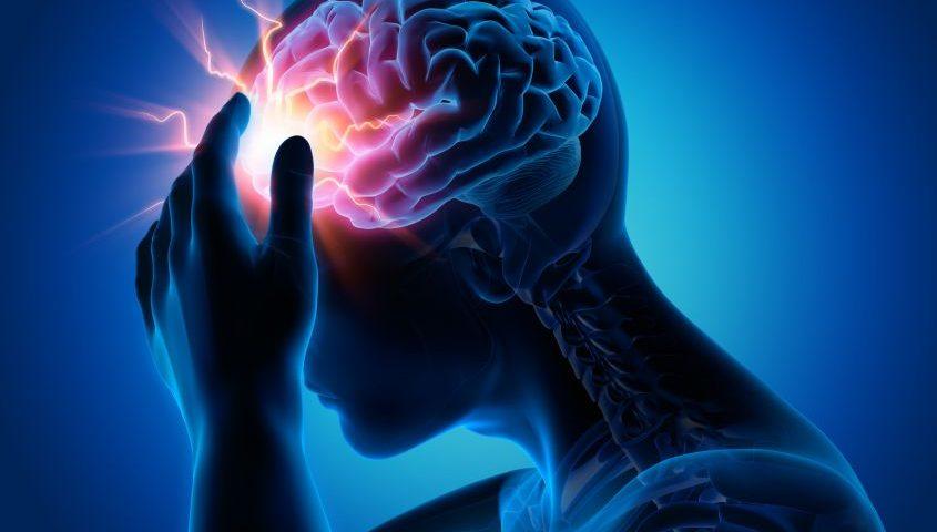 interazione microrganismi e sistema nervoso
