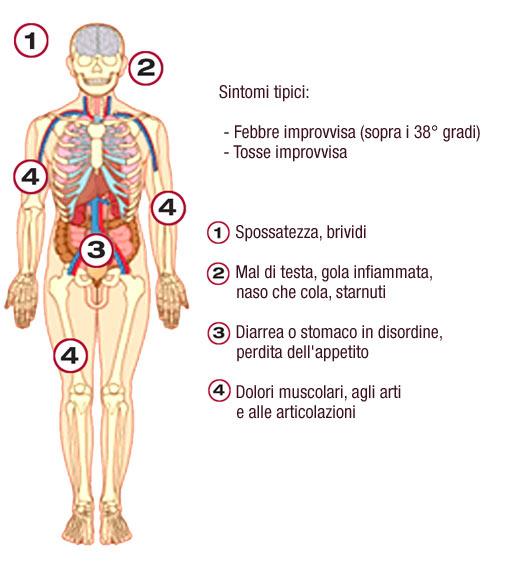 Sintomi tipici dell'influenza
