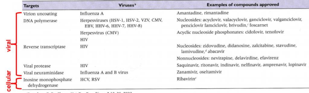target su cui agisco gli antivirali
