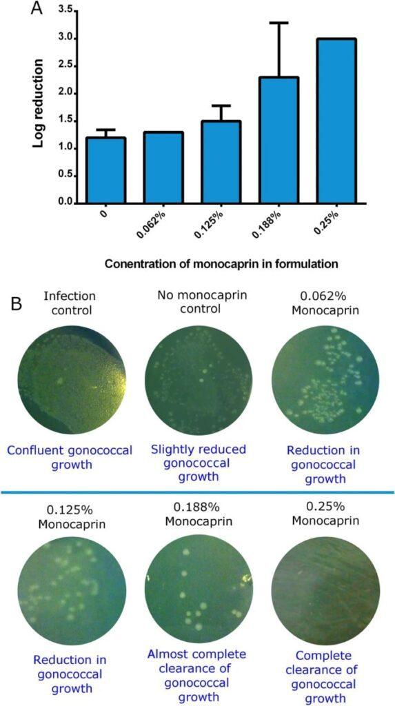 Eliminazione di N. gonorrhoeae dalla superficie degli occhi utilizzando una formulazione oftalmica contenente monocaprina a base di HPMC