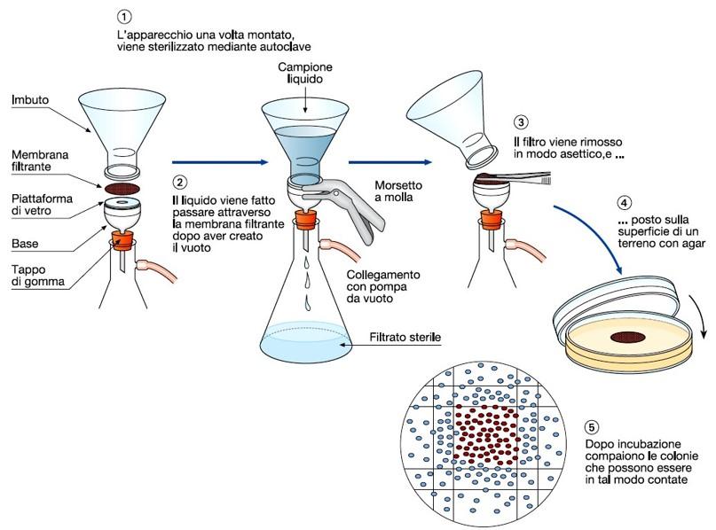 tecnica membrana filtrante